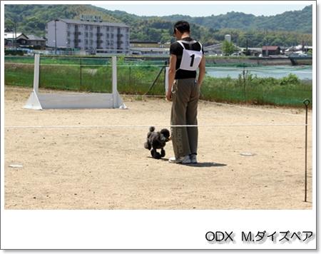 20140511M・daizu.JPG