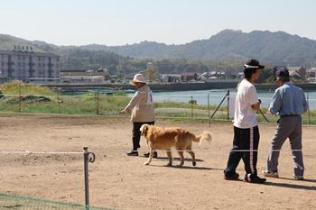 20141019k_momo.JPG