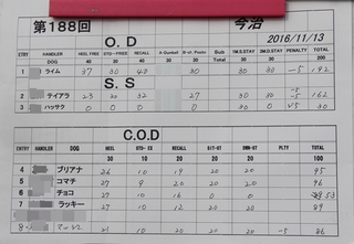 20161113.JPG