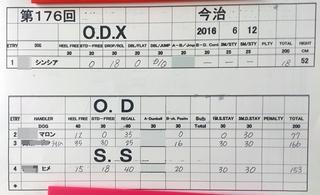 odx-ss20160612.jpg